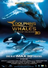 Dolphins and Whales: Tribes of the Ocean 3D